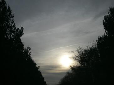 21 Jan 2019, v bright sky / aluminized, 14:12 GMT three trails and more.